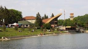Λίμνη στο πάρκο την άνοιξη Στοκ Εικόνες