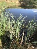 Λίμνη στο παραμύθι στοκ φωτογραφία με δικαίωμα ελεύθερης χρήσης