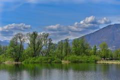 Λίμνη την άνοιξη Στοκ Φωτογραφίες