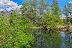 Λίμνη την άνοιξη Στοκ εικόνες με δικαίωμα ελεύθερης χρήσης