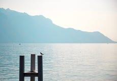 Λίμνη της Γενεύης, Ελβετία Στοκ Εικόνα
