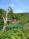 Λίμνη της Κροατίας Στοκ φωτογραφίες με δικαίωμα ελεύθερης χρήσης