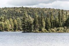 Λίμνη του Καναδά Οντάριο του φυσικού άγριου τοπίου δύο ποταμών κοντά στο νερό Algonquin στο εθνικό πάρκο Στοκ εικόνες με δικαίωμα ελεύθερης χρήσης