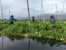 Λίμνη του Μιανμάρ Inle (Βιρμανία) Στοκ φωτογραφία με δικαίωμα ελεύθερης χρήσης