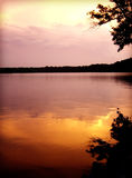 Λίμνη του Τένεσι που απεικονίζει το ρόδινο και πορτοκαλί ηλιοβασίλεμα Στοκ Εικόνες
