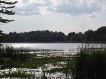 Λίμνη του Τσάρλεστον Στοκ εικόνα με δικαίωμα ελεύθερης χρήσης