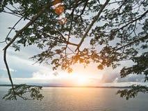 Λίμνη το βράδυ στοκ φωτογραφία