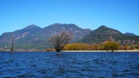 Λίμνη το φθινόπωρο με τα χρυσά δέντρα Στοκ φωτογραφία με δικαίωμα ελεύθερης χρήσης