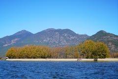 Λίμνη το φθινόπωρο με τα χρυσά δέντρα Στοκ Φωτογραφίες