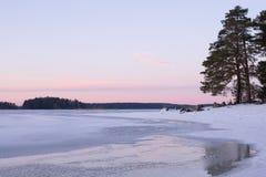 Λίμνη το χειμώνα Στοκ εικόνα με δικαίωμα ελεύθερης χρήσης