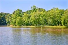 λίμνη τσικνιάδων στοκ φωτογραφίες με δικαίωμα ελεύθερης χρήσης