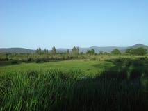 Λίμνη Τόνγκα, Αλγερία στοκ φωτογραφία με δικαίωμα ελεύθερης χρήσης