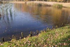 Λίμνη φθινοπώρου, λίμνη και φωτογραφία χλόης Όμορφη εικόνα, υπόβαθρο Στοκ φωτογραφία με δικαίωμα ελεύθερης χρήσης