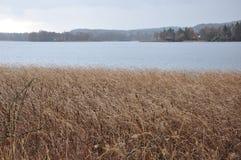 Λίμνη φθινοπώρου, ειρήνη χλόης και ήρεμος στοκ εικόνες