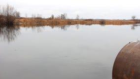 Λίμνη φθινοπώρου με έναν σωλήνα απόθεμα βίντεο