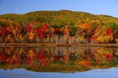 Λίμνη φθινοπώρου με τα κόκκινα δέντρα και τα βουνά Στοκ φωτογραφίες με δικαίωμα ελεύθερης χρήσης