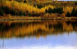 Λίμνη φθινοπώρου της Ισλανδίας που απεικονίζει τα χρώματα Στοκ Εικόνες