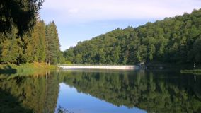 Λίμνη φραγμάτων στο δάσος απόθεμα βίντεο