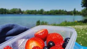 Λίμνη φραουλών και βακκινίων στο υπόβαθρο Στοκ Εικόνα