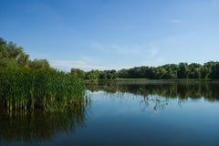 Λίμνη φωτογραφιών στη φύση Στοκ εικόνες με δικαίωμα ελεύθερης χρήσης