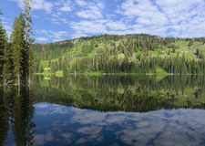 Λίμνη χήνων Στοκ Εικόνες
