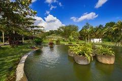 Λίμνη ψαριών στο ναό της Ινδονησίας yogyakarta boko ratu Στοκ Εικόνες