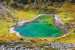 Λίμνη όπως την καρδιά Στοκ Εικόνα