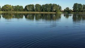 Λίμνη απόθεμα βίντεο