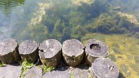 Λίμνη 02 στοκ εικόνες με δικαίωμα ελεύθερης χρήσης