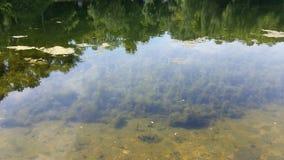 Λίμνη 12 στοκ φωτογραφίες