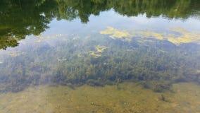Λίμνη 14 στοκ φωτογραφίες
