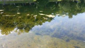 Λίμνη 11 στοκ φωτογραφία με δικαίωμα ελεύθερης χρήσης