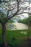 λίμνη angkor wat Στοκ Φωτογραφία