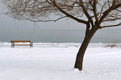 Λίμνη Balaton στο χειμώνα, Ουγγαρία Στοκ Εικόνα