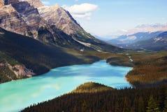 Λίμνη Banff Peyto στοκ φωτογραφίες με δικαίωμα ελεύθερης χρήσης