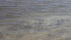 Λίμνη Baskunchak θαλασσινού νερού απόθεμα βίντεο
