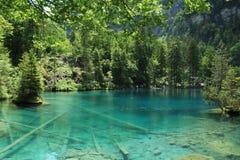 Λίμνη Blausee στοκ φωτογραφία με δικαίωμα ελεύθερης χρήσης