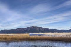 Λίμνη Cerknica με το βουνό Slivnica, Σλοβενία Στοκ φωτογραφία με δικαίωμα ελεύθερης χρήσης