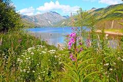 Λίμνη Coldwater Στοκ Εικόνα