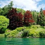 Λίμνη Como κήπων στοκ εικόνες