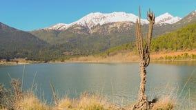Λίμνη Doxa στην Πελοπόννησο Ελλάδα φιλμ μικρού μήκους
