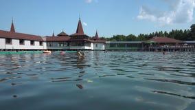 Λίμνη Heviz το καλοκαίρι απόθεμα βίντεο