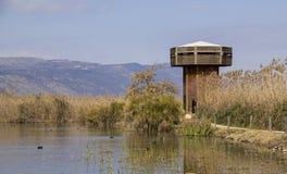Λίμνη Hula - φύση του Ισραήλ και πάρκο άγριας φύσης Στοκ Φωτογραφία