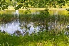 Λίμνη Karpin Στοκ φωτογραφία με δικαίωμα ελεύθερης χρήσης