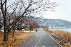 Λίμνη Kawaguchiko Στοκ Φωτογραφίες