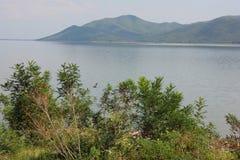 Λίμνη Kerkini Σέρρες Ελλάδα στοκ φωτογραφίες
