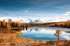 Λίμνη Kidelu το φθινόπωρο Δημοκρατία Altai, Σιβηρία, Ρωσία στοκ φωτογραφία