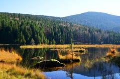 Λίμνη Kleiner Arbersee Moraine με το υποστήριγμα ακαθάριστο Arber στο εθνικό πάρκο βαυαρική δασική Γερμανία Στοκ φωτογραφία με δικαίωμα ελεύθερης χρήσης