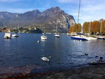 Λίμνη Lecco Στοκ Εικόνα