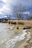 Λίμνη leman Στοκ φωτογραφία με δικαίωμα ελεύθερης χρήσης